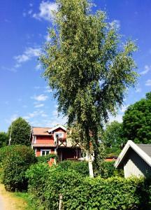Vaxholm 5